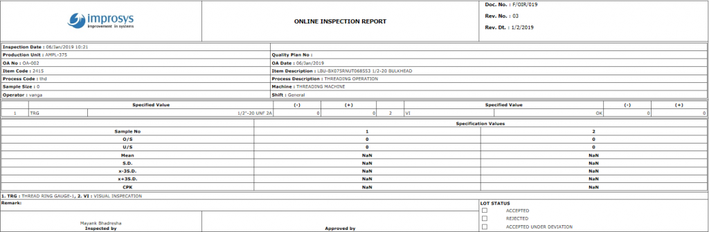 Online inspection report